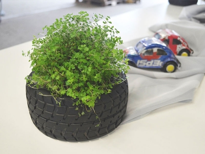 Reifen-Dekoration Ø 13 cm inkl. Pflanze